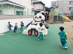 4/24☆パンダのすべり台